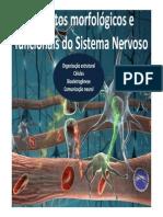 Aspectos Morfologicos e Funcionais Do Sistema Nervoso-ParteI_20140223195615