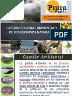 PresentacionGorePiura