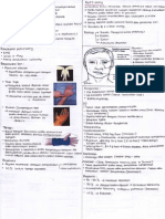 Neuropati 2