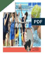 Deportes Colectivos y Individuales