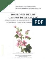 100 Flores Albacete