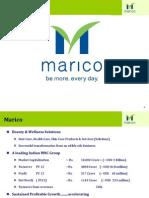 Marico Investor Presentation_FY13