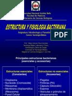 3 y 4_Estructura y Fisiologia Bacteriana