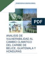 5.3 Analisis de Vulnerabilidad Arrecife Mesoamericano June 12 2012