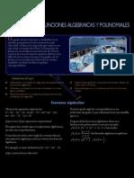 Funciones Algebraivas y Polinomialesbb