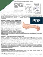 Cura Naturale Artrosi