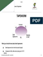 Ag Mc Tapeworm Rsa en Lp 112320