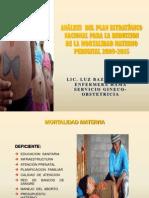 Analisis Del Plan Estrategico Nacional Para La Reduccion