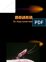Malaria Universidad