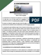 La Contaminacion Ambiental