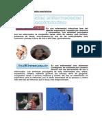 PRINCIPALES ENFERMEDADES RESPIRATORIAS.docx