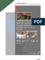 Etude Des Boutiques-echoppes de Proximite-En Afrique-cameroun