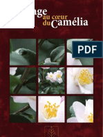 Notre Passion du Camélia