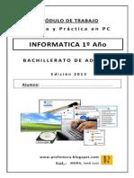 Modulo Informatica 1º año BA 2013