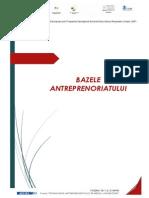Bazele Antrep Manual