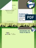 3.- Presentacion Recap's Pi-b03-01