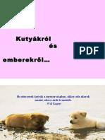 Kutyakrol embereknek