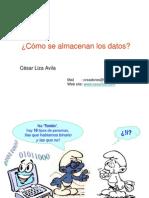 Algor1 - 10.2 -ComoSeAlmacenanLosDatos(1)