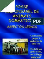 Posse Responsável de Animais Domésticos – Aspectos Legais