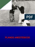 aula+10+estágios+anestésicos