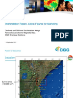 31303 NEX Magnetic Survey ONS OFS SE Kenya Final Report 20130911 Marketing Only