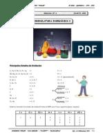 4to. QUIM - Guía Nº 6 - Nomenclatura Inorgánica I.doc