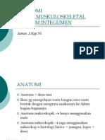 Anatomimuskuloskeletal Dan Integumen (1)