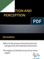 b Sensationandperception 110817052633 Phpapp01 Copy