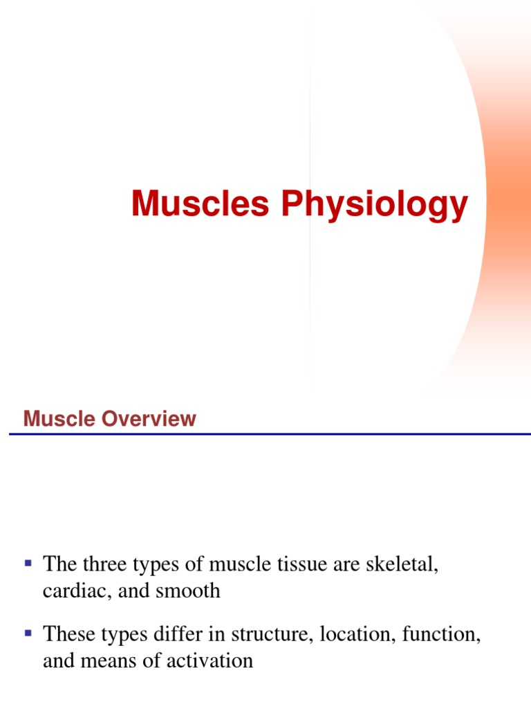 Faal Otot Ppt Smooth Muscle Tissue Muscle Contraction