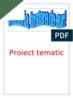 Proiect tematic meseria bratara de aur 2014.docx