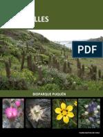 Los Molles, Guia de Flora Nativa