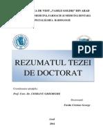 Rezumat Teza Doctorat Dr Furau Cristian