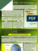 Tema 7 Ecosistema Terrestre Invertebrados