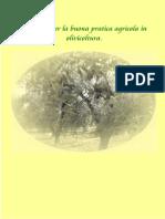Manuale per la buona pratica agricola in olivicoltura