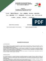 Diagnostico_pete y Pat 2012-2013