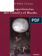 LAS EXPERIENCIAS DEL TUNEL Y EL BARDO-SERGIO PEÑAYLILLO