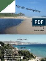 Mediile-Subtropicale