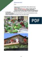 Terasa casei, cu floriTerasa Casei, Cu Flori