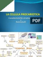 002cellula microbiologia