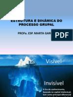 AULA2Estrutura e dinâmica do Processo Grupal