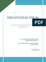 Informacion Discapacidad Visual