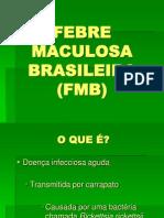 Febre Maculosa Brasileira (FMB)