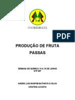 Produção de frutas passas