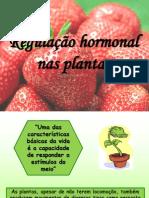 ppt_hormonas-vegetais.ppt