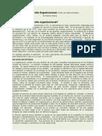 Desarrollo Organizacional Warner Burke_libro