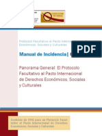PF PIDESC, Programa General El Protocolo Facultativo Al Pacto Internacional de Derechos Economicos, Sociales y Culturales