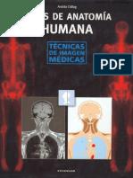 Atlas de Anatomia Humana Radiologica (2)