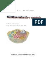 Tiago_Afonso_-_TLB_-_celulas_animais_e_vegetais.pdf