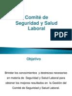 Comité de Seguridad y Salud Laboral