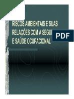 RISCOS-AMBIENTAIS